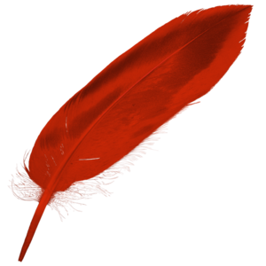ICalamus - Image: I Calamus feather 512x 512