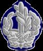 IDF RASAM Avir.png