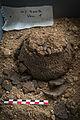 INRAP présentation fouilles Obernai 6000 ans occupation 24 octobre 2013 31.jpg