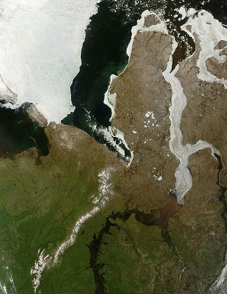 鄂毕湾(Gulf of Ob)海岸上出现了大批神秘的雪球 - wuwei1101 - 西花社