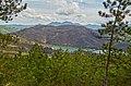 Il lago fa capolino tra i pini. - panoramio.jpg