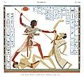 Illustration from Monuments de l'Egypte de la Nubie by Jean-François Champollion, digitally enhanced by rawpixel-com 7.jpg