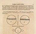 "Illustration of Jupiter and Saturn from ""Ars Magna Lucis et Umbrae"".jpg"