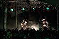 Immergut Bands-Roosevelt260.jpg