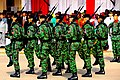 Indonesian army soldiers camo.jpg