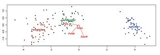 Biplot - Discriminant analysis biplot of Fisher's iris data (Greenacre, 2010)
