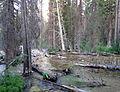 Iron Creek (14998442469).jpg