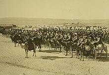 Unidade de cavalaria otomana montada em camelos durante a Primeira Guerra Mundial