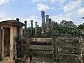 Jayanthipura, Polonnaruwa, Sri Lanka - panoramio (10).jpg
