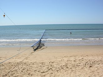 Box jellyfish - Jellyfish/stinger net exclosure at Ellis Beach, Queensland, Australia