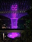 Jewel Changi Airport Rain Vortex at night.jpg