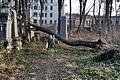 Juedischer friedhof 13.jpg