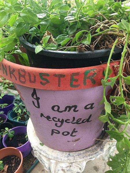 File:Junkbusters plantpot.jpg