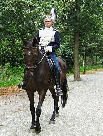 German cavalry in World War I - German Army cavalry re-enactment