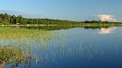 Kaiu järv 26-05-2012.JPG