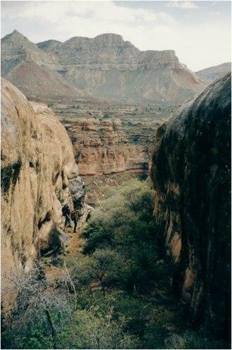 Kanab Creek - Kanab Creek in Kanab Canyon