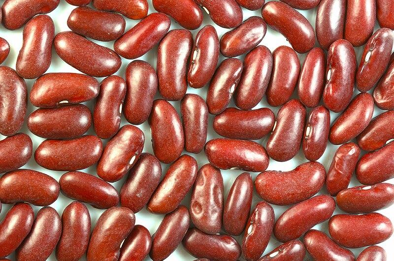 चित्र:Kidney beans.jpg