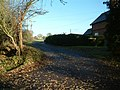 Knightsbridge Lane, the road to Knightxbridge Farm - geograph.org.uk - 93398.jpg