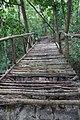 Ko Lanta Jungle Hiking Trail 5 - panoramio.jpg
