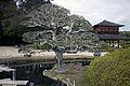 Korakuen Okayama49n4000.jpg