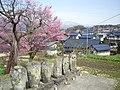 Kosuge settlement 8.JPG