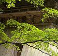 Koyasan 高野山 (Wakayama-Japan) (4951360894).jpg