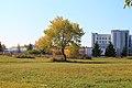 Krasnoobsk, Novosibirskaya oblast', Russia - panoramio (3).jpg