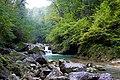 Kurdzhips river - panoramio (1).jpg