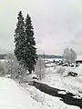 Kvilda - Teplá Vltava v zimě.jpg