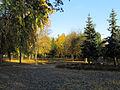 Kyiv General Potapov Park11.JPG