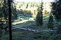 Līgatne - panoramio (17).jpg