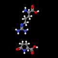 L-Arginine-L-pyroglutamate 3D.png