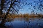 LSG H 00070 Calenberger Leinetal - Teich an der Calenburg (5).jpg