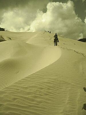 La Guajira Desert - Dunes in La Guajira Desert