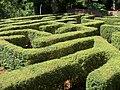 Laberinto vegetal de Montecarlo - panoramio (1).jpg