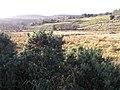 Laghty Barr Townland - geograph.org.uk - 1118322.jpg