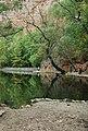 Lago-monasterio de piedra-nuevalos-2010 (2).JPG