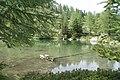 Lago d'Arpy - panoramio (13).jpg