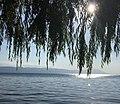 Lake İznik.jpg