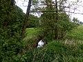 Landschaftsschutzgebiet Kilverbachtal Datei 9.jpg