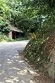 Lane by Launcells Barton - geograph.org.uk - 427791.jpg
