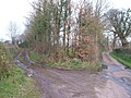 Lane junction near Westpoint - geograph.org.uk - 140771.jpg