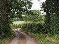 Lane to Lipe Hill (2) - geograph.org.uk - 1366603.jpg