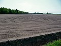 Large field prepared and sown in - near Smilde, Midden-Drenthe, Netherlands.jpg