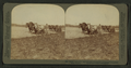 Latest methods in man's ancient occupation -- ploughing on a prarie farm, Illinois, by Underwood & Underwood.png