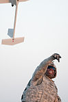 Launching the Raven Unmanned Aerial Vehicle DVIDS211661.jpg
