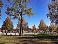 Le parc du Champ-De-Mars à Colmar au début de l'automne.jpg