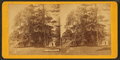 Lemon Hill Mansion, by R. Newell & Sons.png