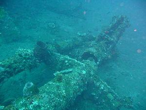 USAT Liberty - Image: Liberty wreck 2