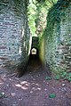 Light at the end of the tunnel - geograph.org.uk - 522639.jpg